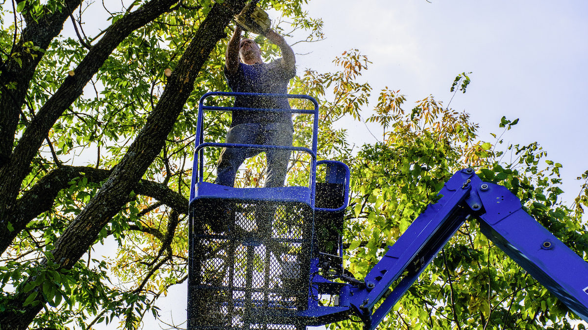 Five Benefits of Using an Aerial Lift for Tree Trimming 1200x675 - Five Benefits of Using an Aerial Lift for Tree Trimming