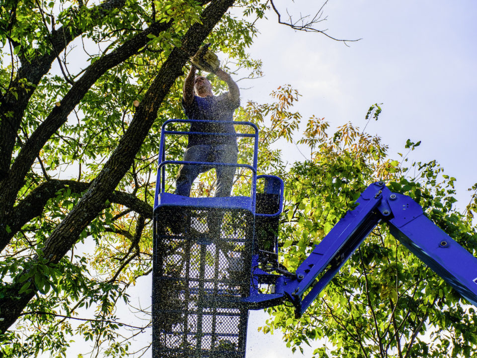 Five Benefits of Using an Aerial Lift for Tree Trimming 960x720 - Five Benefits of Using an Aerial Lift for Tree Trimming