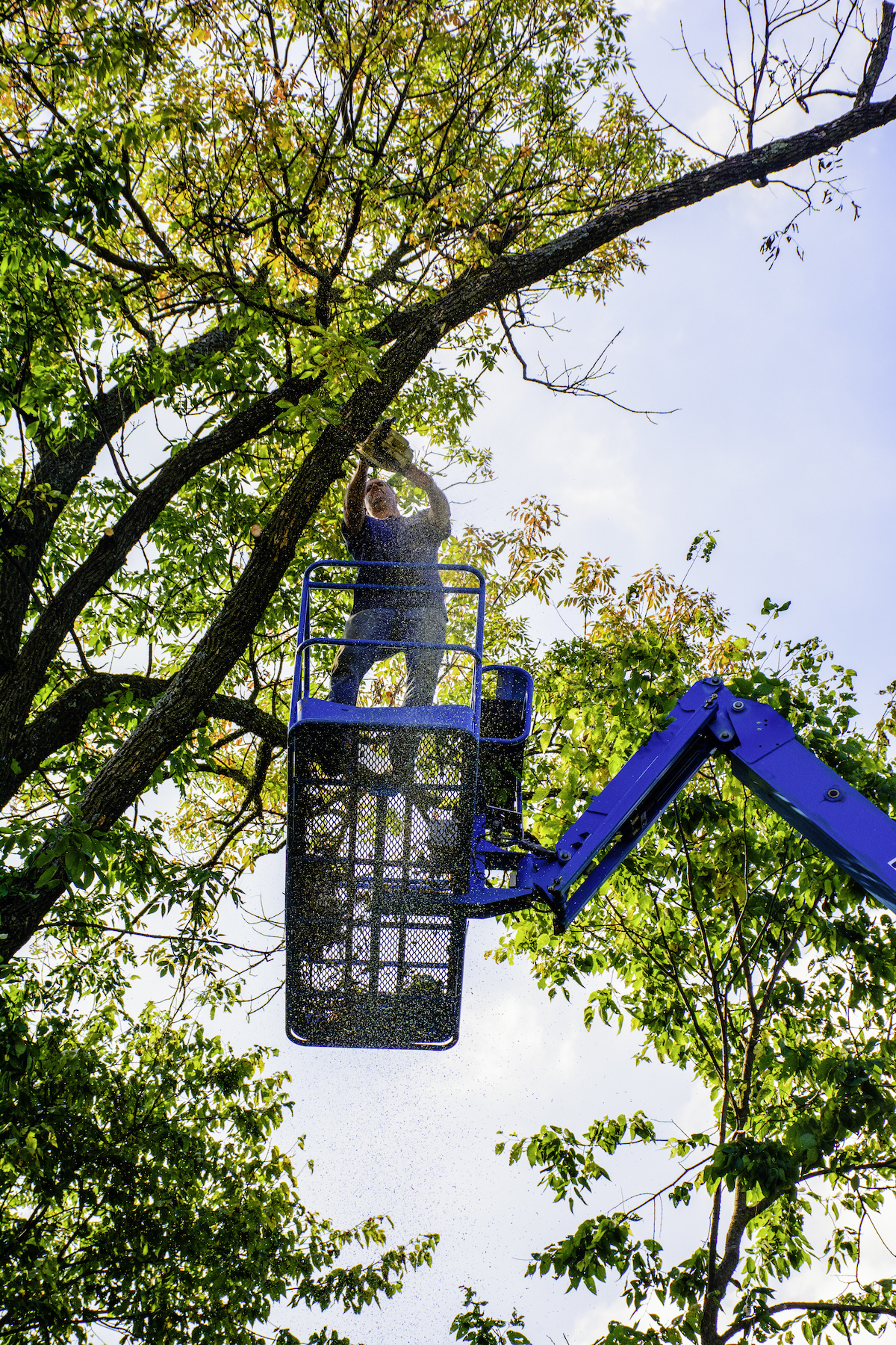 Five Benefits of Using an Aerial Lift for Tree Trimming - Are Your Trees Ready for the Next Big Florida Storm?
