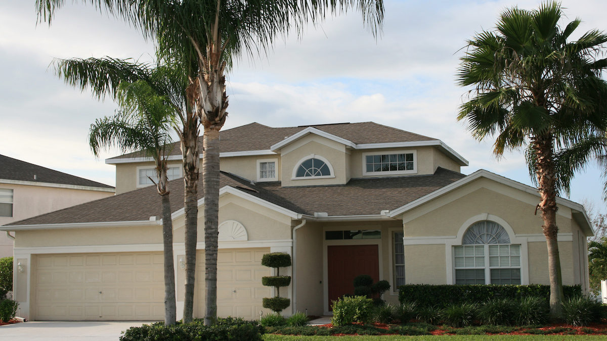 Eleven Benefits a Professional Tree Service Offers in Palm Harbor 1200x675 - Eleven Benefits a Professional Tree Service Offers in Palm Harbor