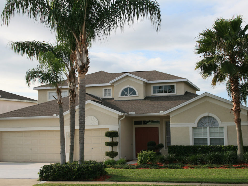 Eleven Benefits a Professional Tree Service Offers in Palm Harbor 960x720 - Eleven Benefits a Professional Tree Service Offers in Palm Harbor