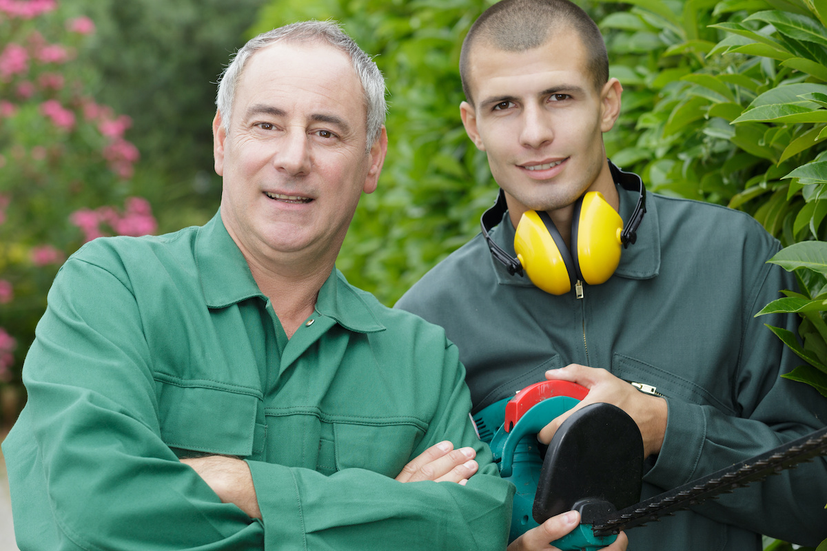 arborist men workign  - Before You Hack a Tree: Why Hire a Certified Arborist?