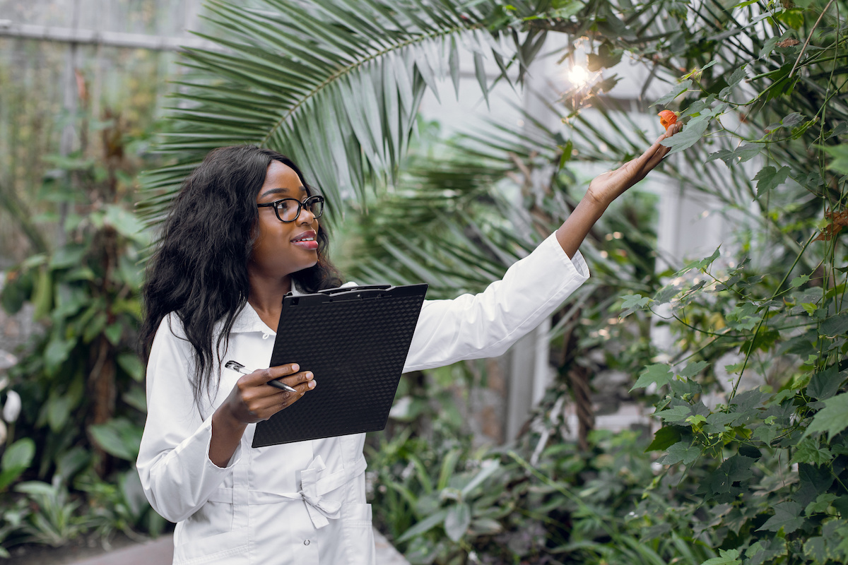 female african american arborists doing research - Before You Hack a Tree: Why Hire a Certified Arborist?